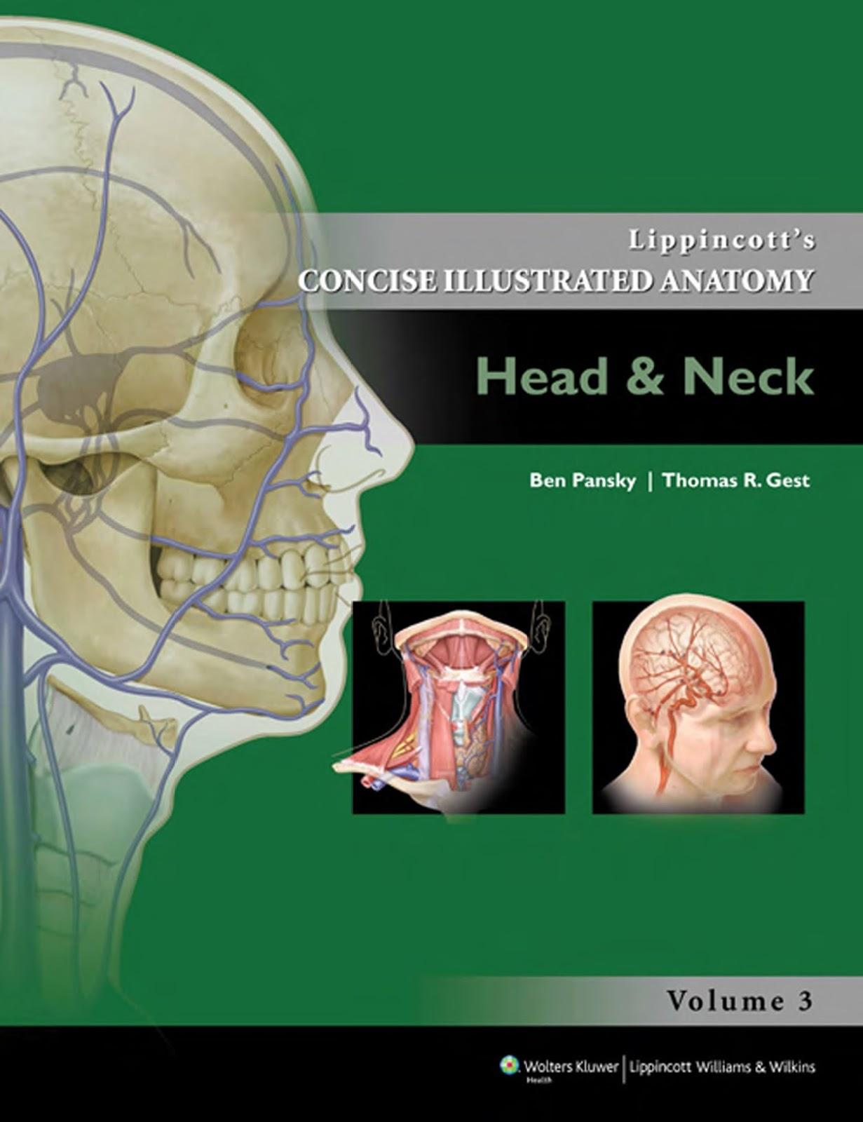 Pansky anatomy