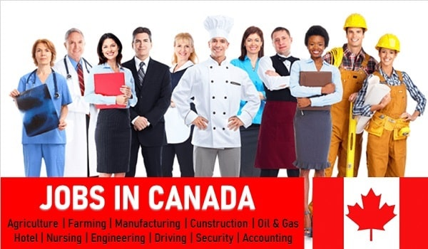 LATEST ACCOUNTING JOBS IN ONTARIO, CANADA
