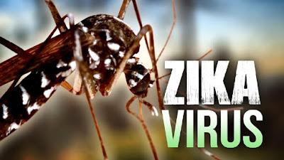 4 Tip cara Mencegah Virus Zika
