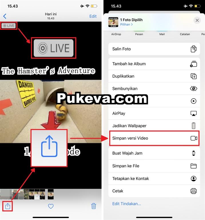 Cara Menyimpan Video Tiktok Tanpa Watermark Di Iphone Pukeva