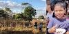 Goiânia: Corpo de criança é achado em mata