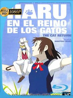 Haru En El Reino De Los Gatos [2002] HD [1080p] Latino [GoogleDrive] SilvestreHD