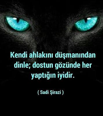 """""""Kendi ahlakını düşmanından dinle; dostun gözünde her yaptığın iyidir."""" (Sadi Şirazi), sadi, şair, yazar, güzel sözler, özlü sözler, anlamlı sözler, günün sözü, kedi, kaplan, siyah kaplan"""