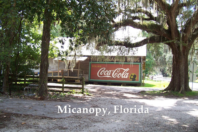 FLORIDA DAY TRIP TO MICANOPY FLORIDA TREASURE HUNTING