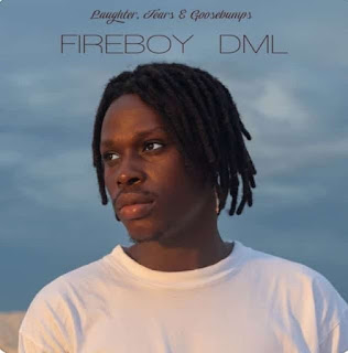 [Full Album] Fireboy DML - Laughter, Tears and Goosebumps
