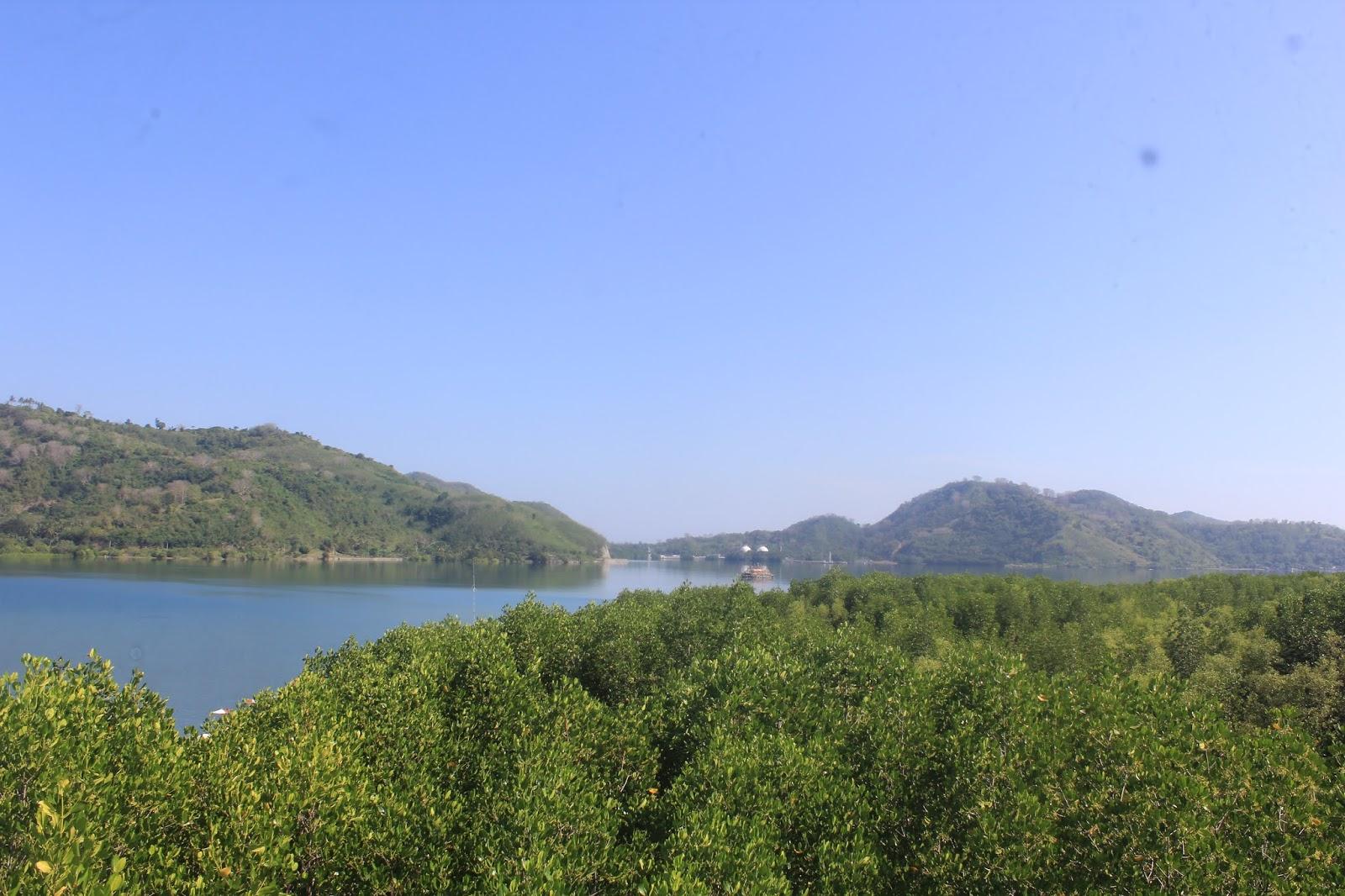 Pemandangan di pagi hari dari Puncak menara mangrove sekotong tengah