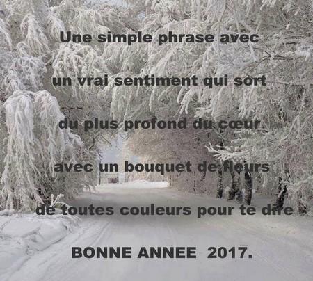 Souhait de nouvelle ann e messages et textes d 39 amour - Texte carte de voeux 2017 ...