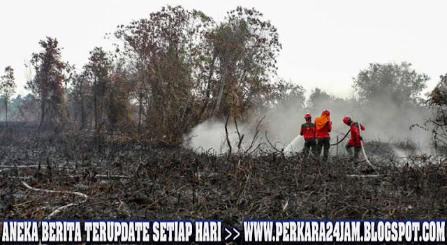 Pihak Kepolisian Tangkap Tangan Pelaku Pembakar Lahan Di Hulu Sungai Selatan
