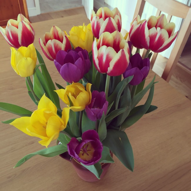 Our-weekly-journal-shopping-and-ants-yellow-and-purple-red-and-white-tulips-in-brown-jug
