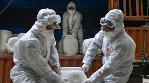 World Health Organization has brought a free online course on corona virus