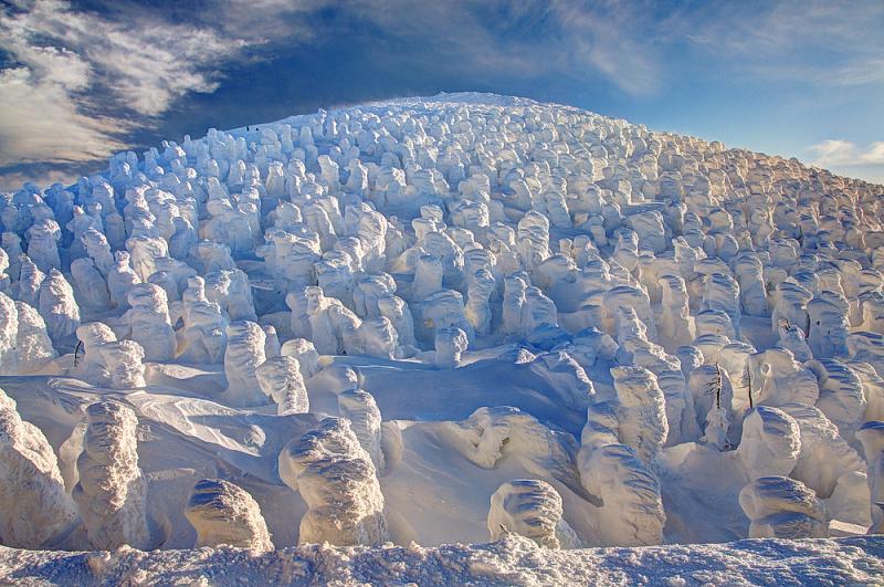 Mount Zao Snow Monsters