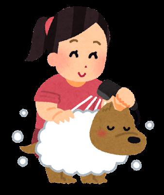 犬を洗う人のイラスト