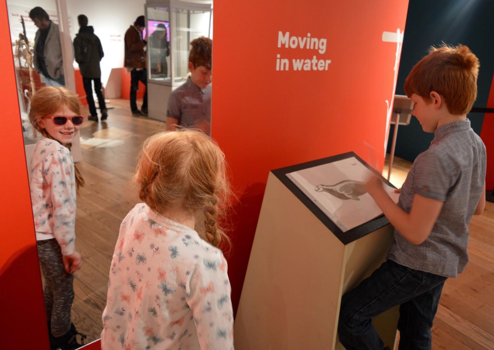 Bones Exhibition at Hancock Museum, Newcastle - spine moving in mirror
