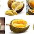 Cara Budidaya Tanaman Buah Durian Dalam Pot