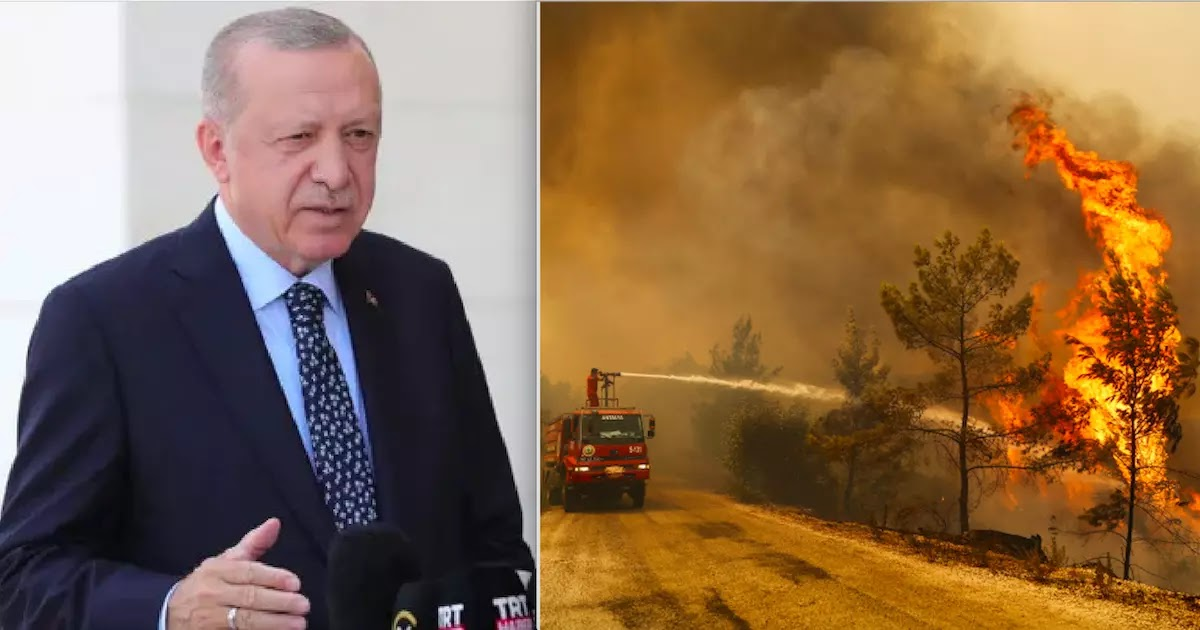 Erdogan Admits Turkey Doesn't Have A Single Firefighting Plane To Tackle Huge Wildfires