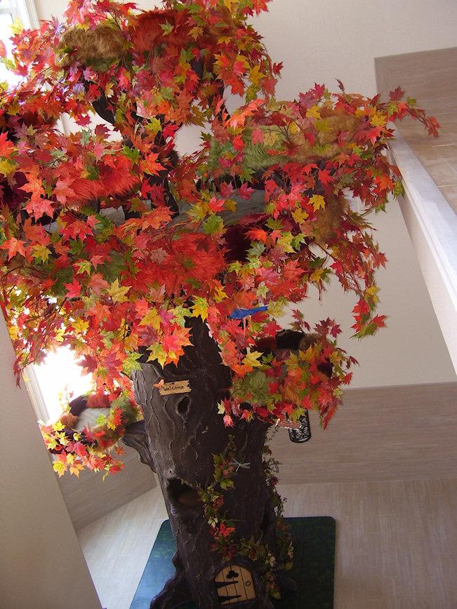 Fall Colors Cat Tree