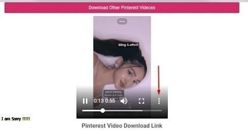 Cara Mendownload Video Di Pinterest Tanpa Aplikasi Tambahan