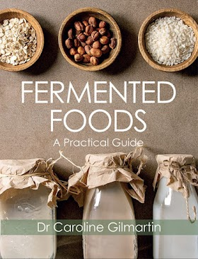 Fermented Foods: A Practical Guide