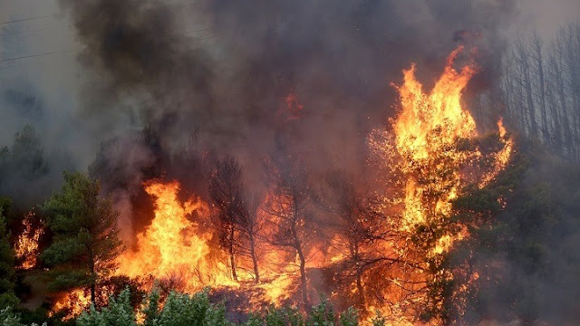 81 δασικές πυρκαγιές την Τρίτη 3/8 - Σε εξέλιξη οι φωτιές σε Βαρυμπόμπη, Εύβοια, Μεσσηνία και Λακωνία