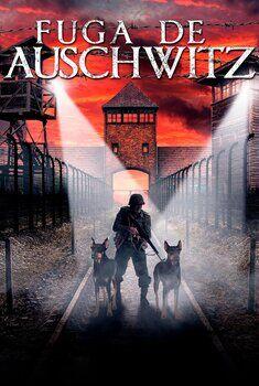 Fuga de Auschwitz Torrent - WEB-DL 1080p Dual Áudio