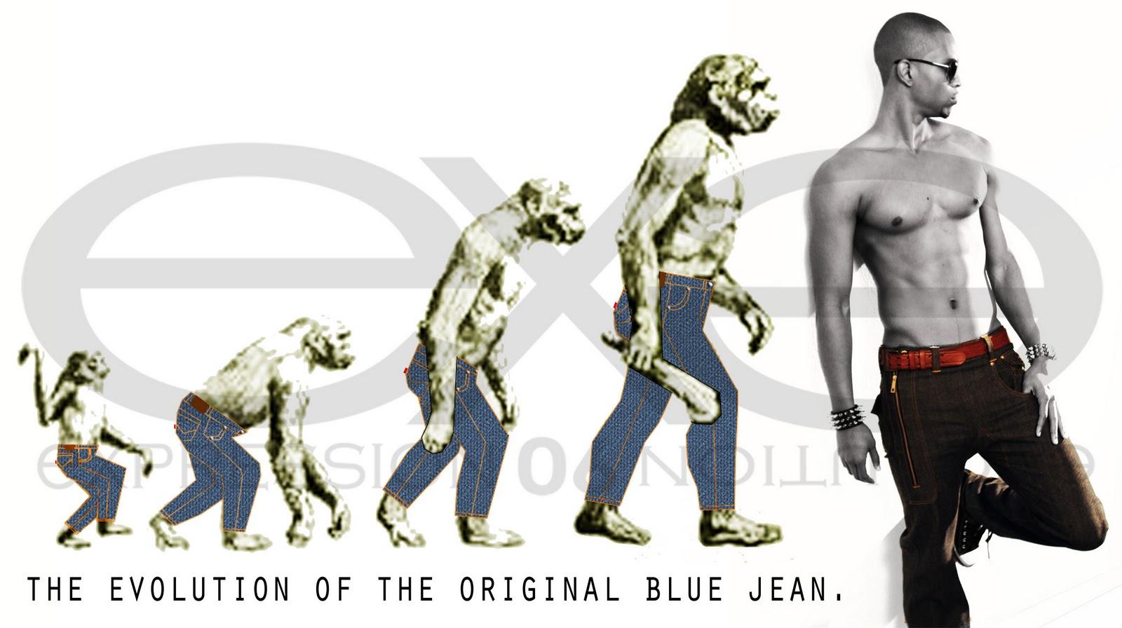 Human Evolutionary Chart