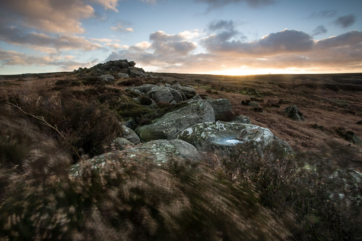 Tristan Campbell - Photography - Moors