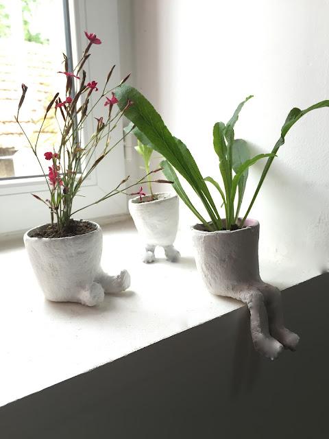 des petits pots de fleurs sur pattes caract 233 rielle