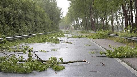 Házakat rongált és közlekedési akadályokat okozott a vihar Zalában és Somogyban