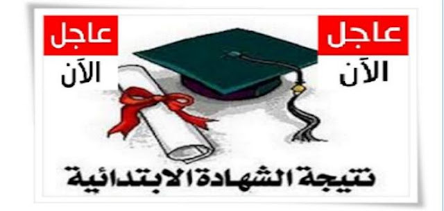 """""""ضربة حرة"""" ينشر نتيجة الشهادة الابتدائية الترم الاول 2017 فى مطافظة القاهرة والجيزة"""