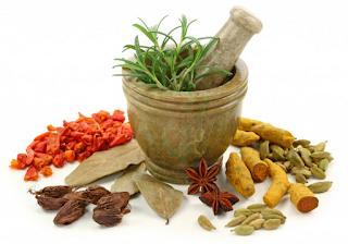 7 Ramuan Herbal Obat Sifilis