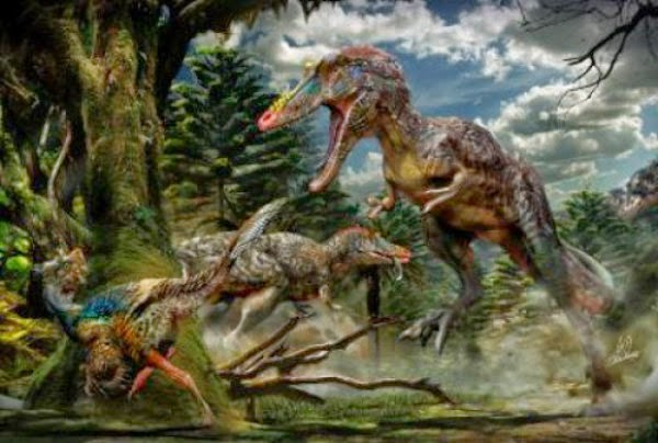 Qianzhousaurus Sinesis, Pinocchio Rex