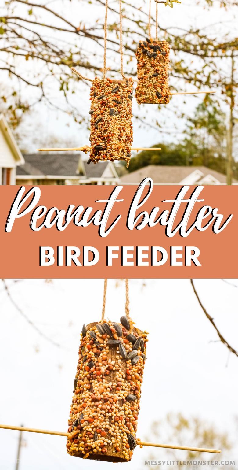 Peanut butter bird feeder. How to make an easy toilet roll bird feeder craft for kids.