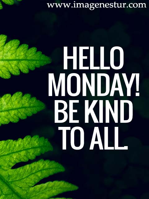 Hello Monday! Be kind to all.