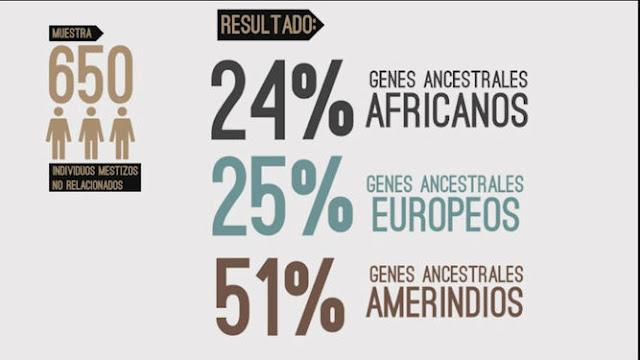 Estudio científico revela que el panameño mestizo promedio