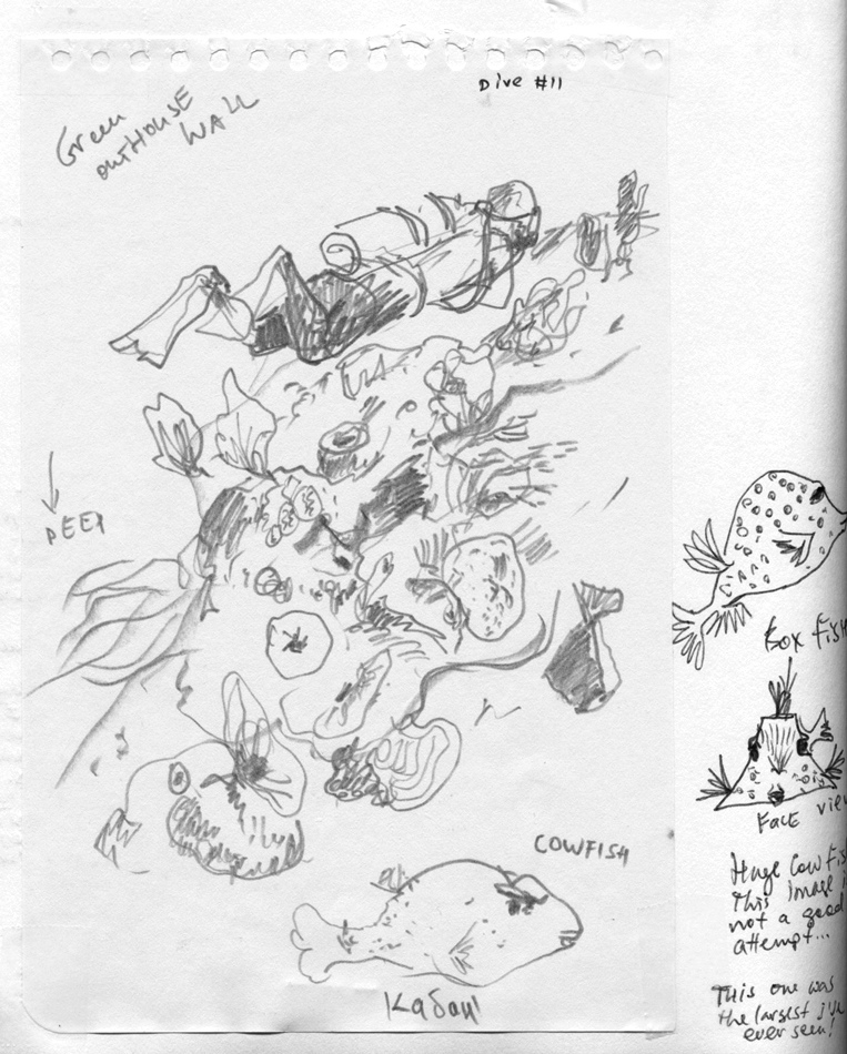 Scuba Diving With A Sketchbook