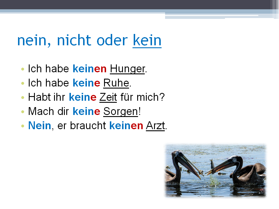 the oder kein the