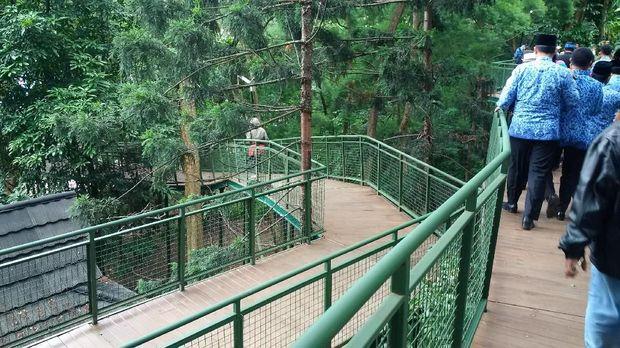 Hirup udara segar di Forest Walk Baksil