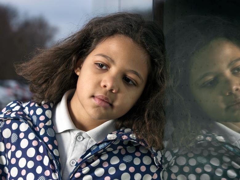 Joylaea Blazevic de oito anos, chegou em casa assustada e confusa, depois de assistir uma apresentação sobre mudanças climáticas envolvendo Greta Thunberg e um relógio tiquetaque