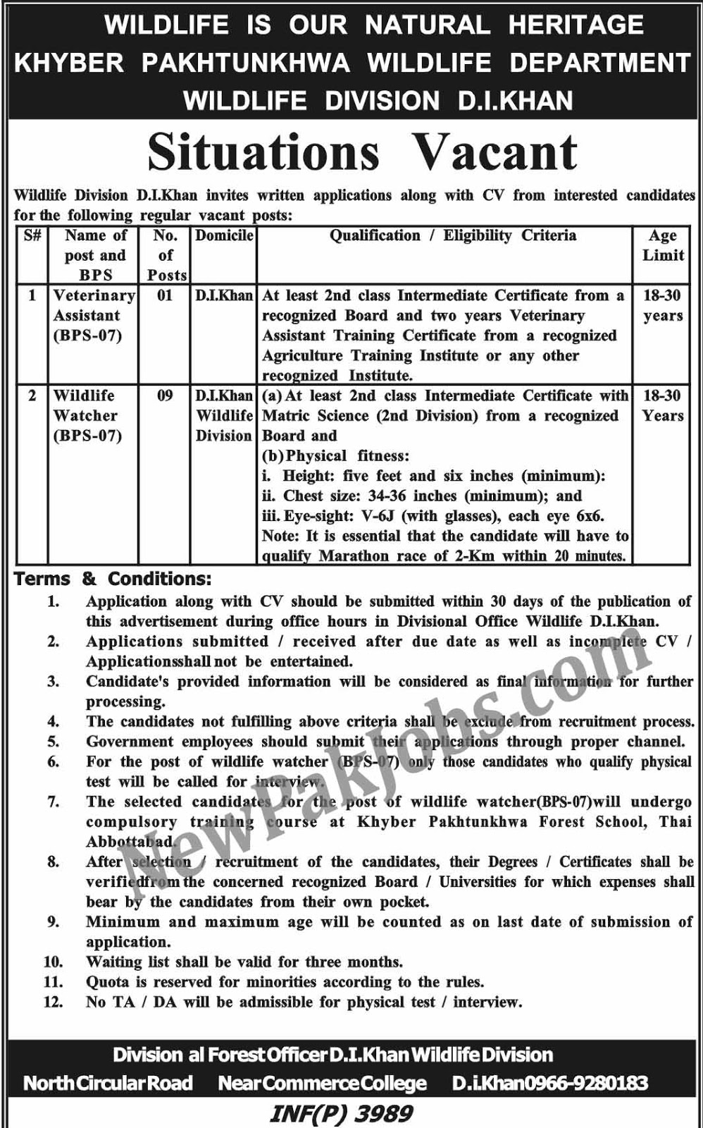 Government Jobs for Intermediate Matric - Wildlife Division DI KHAN