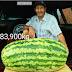 Riverense cosechó la sandía más grande del Uruguay que pesa 83,900 kilos