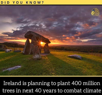 Ireland is planning to plant 400 million trees in the next 40 years to combat climate.