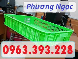 Sọt nhựa rỗng HS010, sọt đựng trái cây, sóng nhựa rỗng đựng nông sản 7