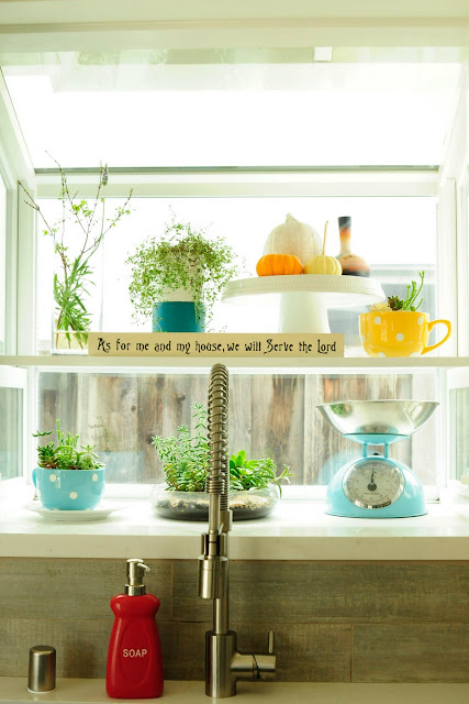 Kitchen window display with plants