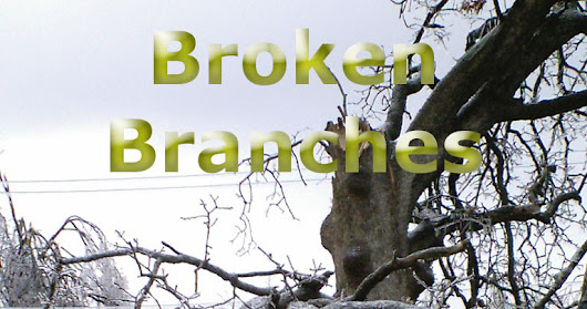 Broken Branches on FishHawk Droppings