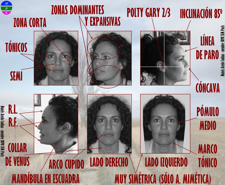 BLOGGER WWW.MORFOPSICOLOGIA.ORG: BREVE ANÁLISIS MORFOPSICOLÓGICO ...