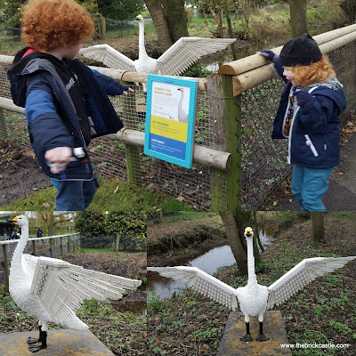 Martin Mere Wetland Centre Giant LEGO trail Swan
