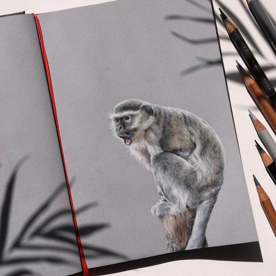 08-Little-monkey-Ruzanna-www-designstack-co