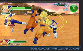 Dragon Ball Tag VS