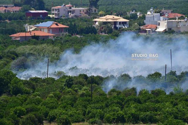 Πυρκαγιά κοντά στο Αργολικό του Δήμου Ναυπλιέων