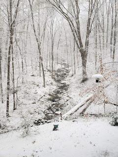 Inusual nevada para el mes de abril en las Carolinas (Estados Unidos)